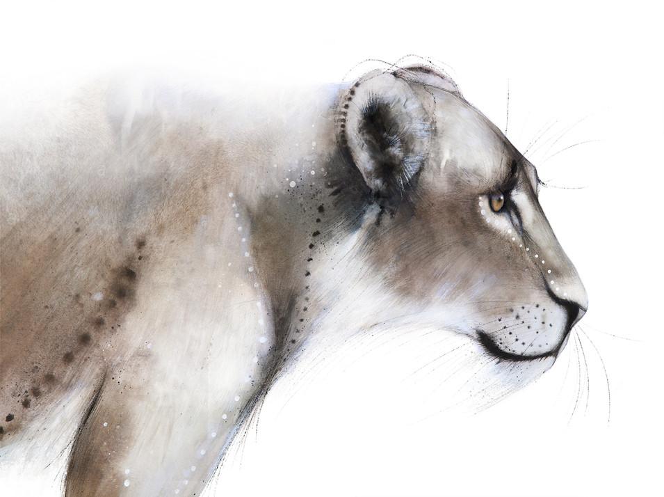 Lionessmall.jpg