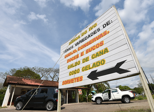 Banca do Ivo: o melhor queijo de Morretes