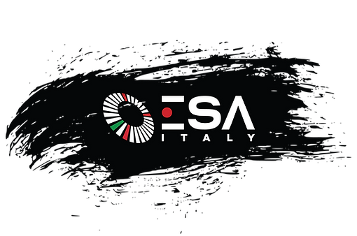 ABOUT ESA italy.png