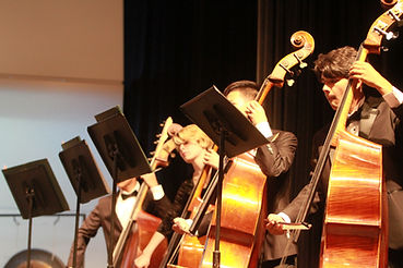 MVHS Orchestra Double Bass Players during performance
