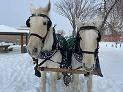 Bonny and Donny hay ride 1.jpg