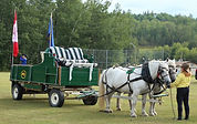 Green Wagon Parade.JPG