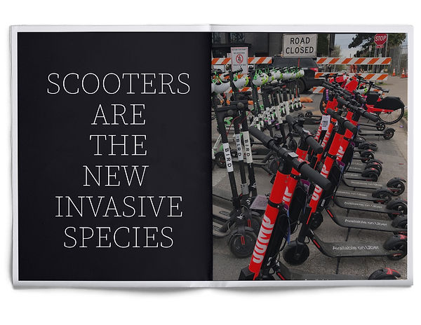 Scooters.jpg