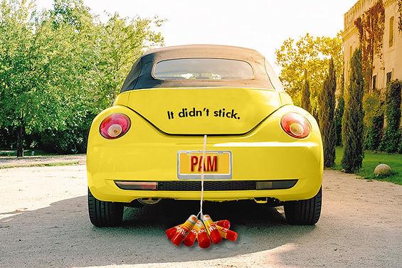 pam_car22.jpg