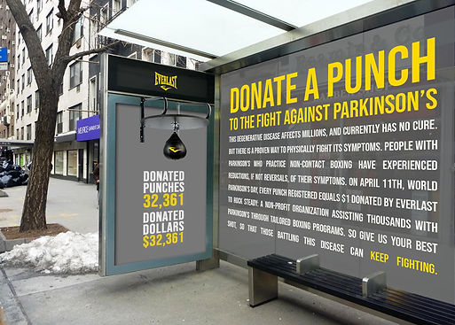 Everlast punch donation.jpg