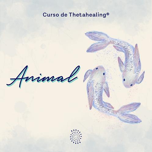 Animal | Online