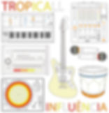 Capa Tropicall - Influencia.jpg