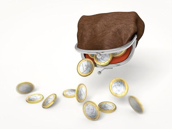 Porte-monnaie euro.jpg