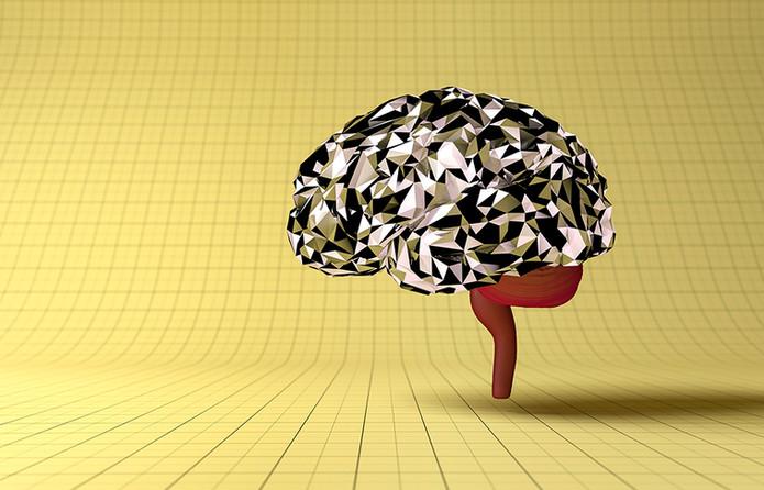 Cerveau V3.jpg
