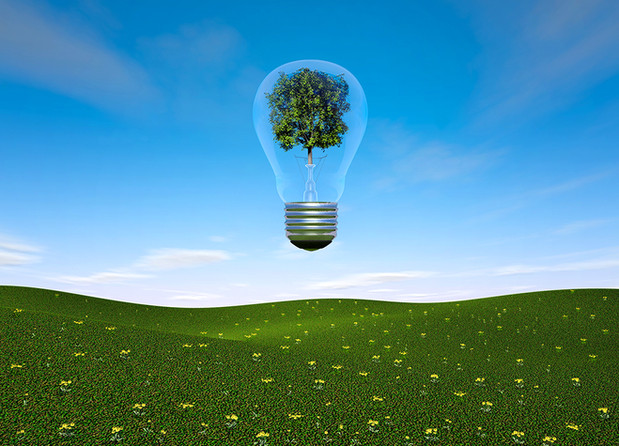 Ampoule avec arbre.jpg
