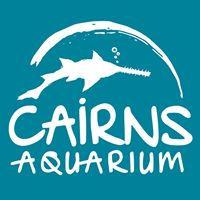 Cairns Aquarium.jpg