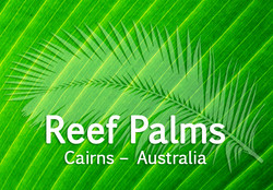 Reef Palms Apartments