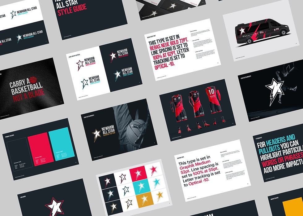 Pages from the NASSA brand guidelines