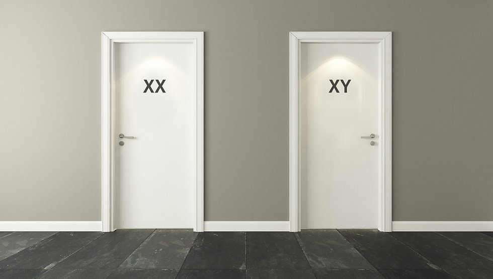 Toilet doors with very confusing modern signage