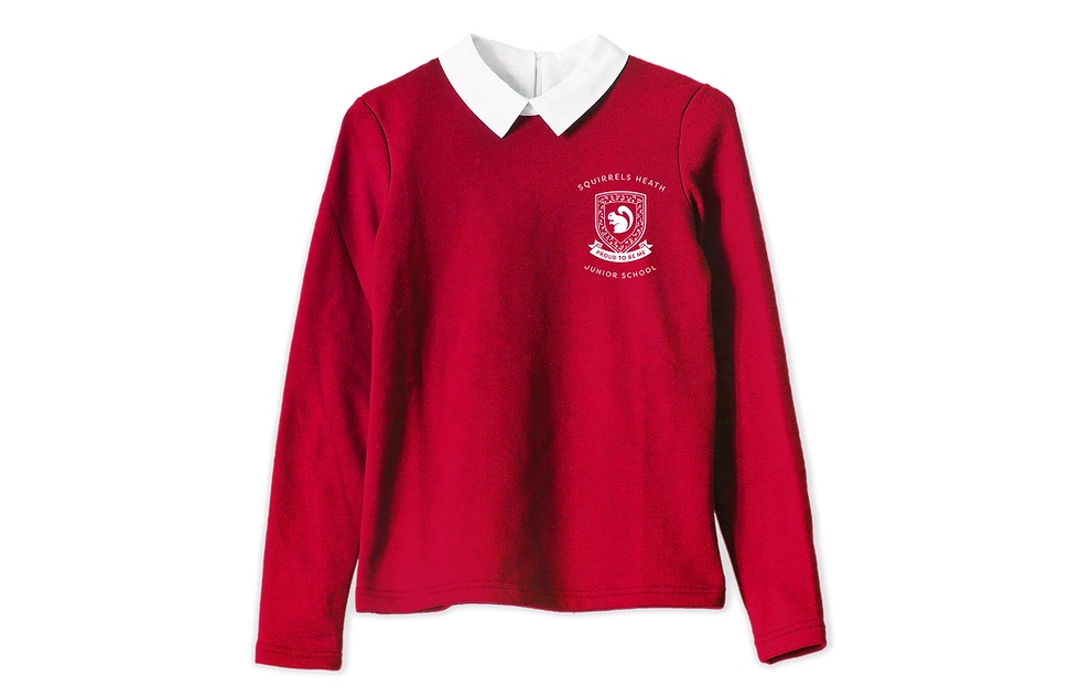 Red school uniform jumper with white shirt