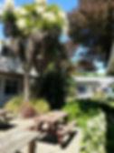 Picnic tables, guest clothesline, gorgeous gardens.