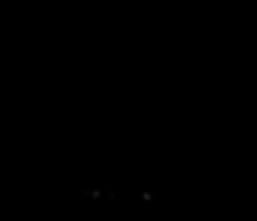 logo noir blanc sans fond.png