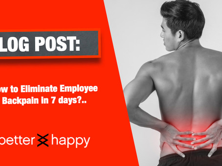 How To Eliminate Bad Backs At Work
