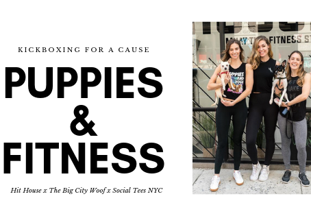 Kickboxing For A Cause: Puppies & Fitness V