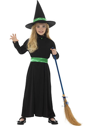 Wicked Witch Costume AFD48008