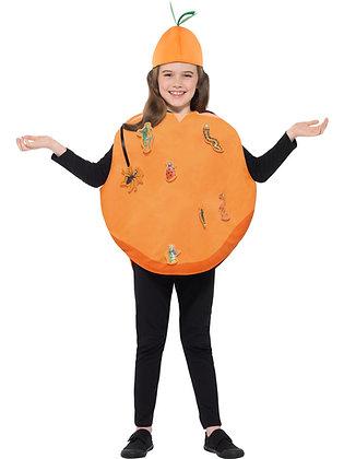 Roald Dahl Giant Peach Costume AFD42852