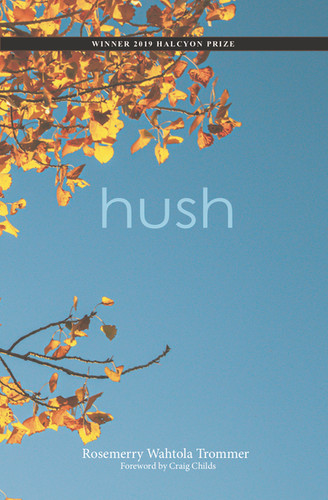 Hush Front Cover JPEG May 12 2020.jpg