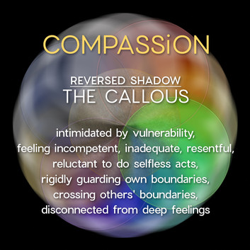 4 M2 Compassion.jpg