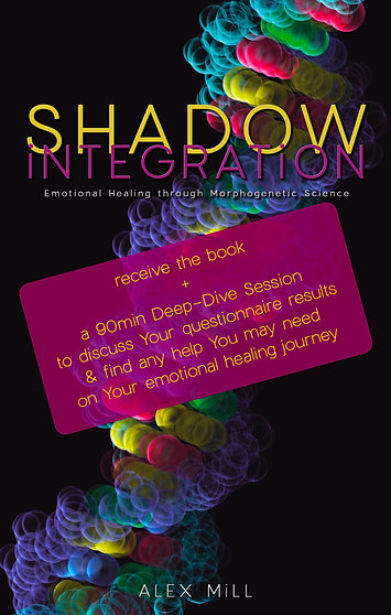 90min Session + SHADOW iNTEGRATiON book