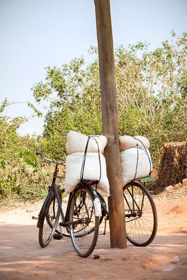 Bicycles are used for transporting people and goods