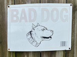 Bad Dog_edited.jpg