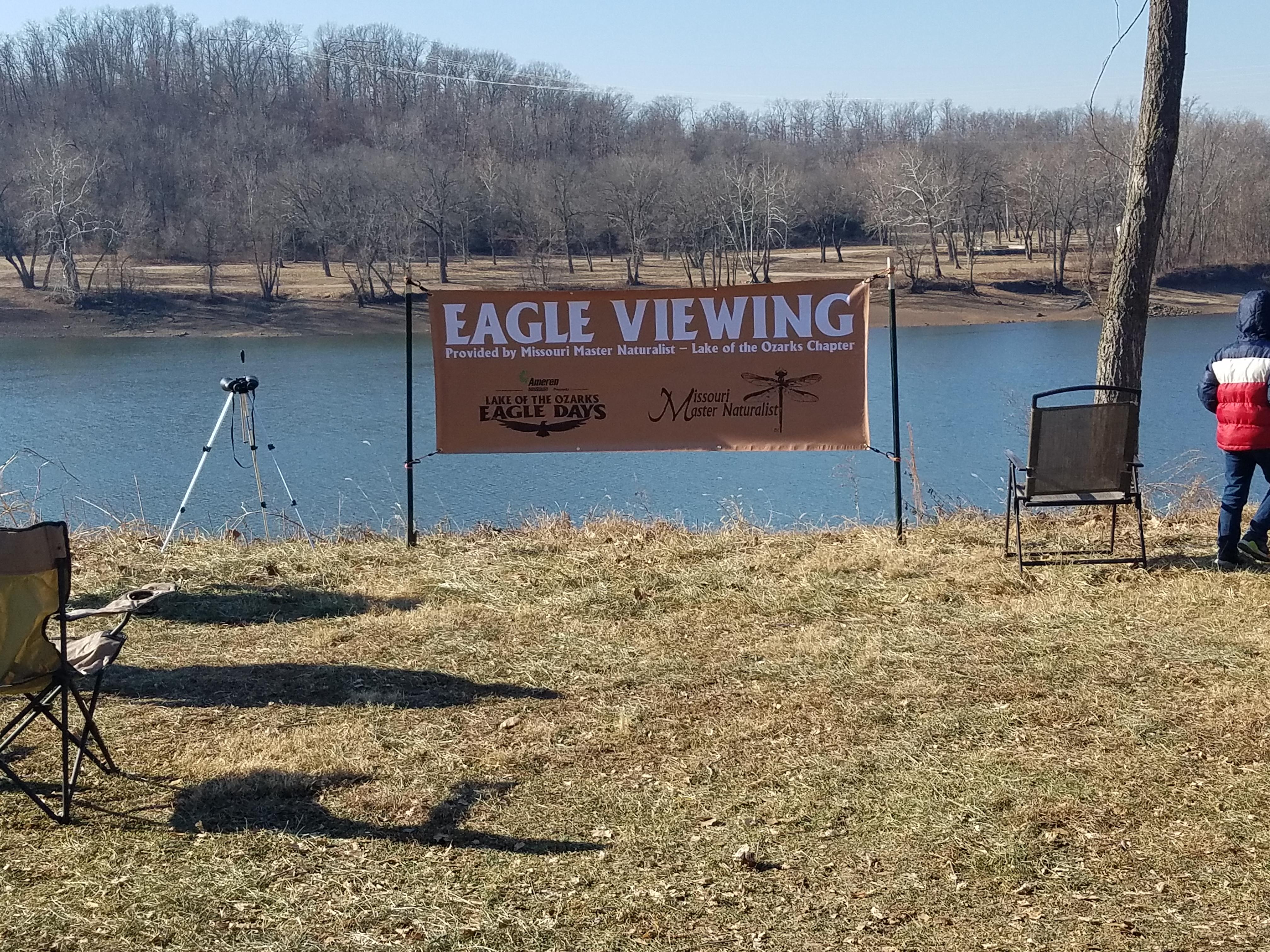 eagle days 10