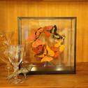 Oranje en Rode Vlinders in Krans