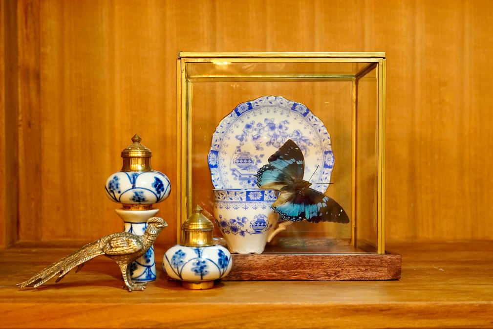 Vlinder Vitrine Blauw