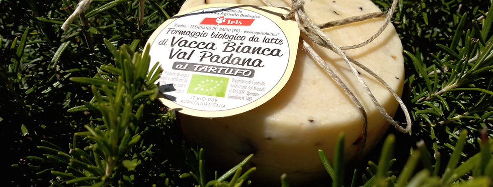 Caciotta di Bianca Valpadana BIOLOGICA al tartufo