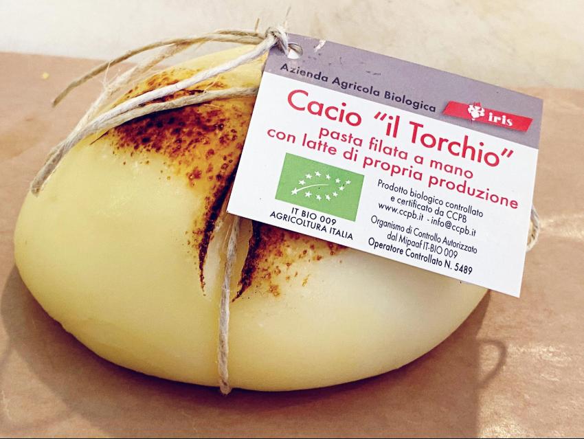 """Cacio """"Il Torchio"""" BIO"""