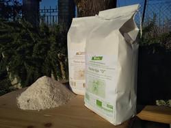 Farine Biologiche grano Verna