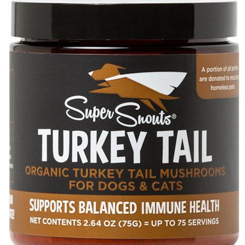 Turkey Tail Mushrooms 75gm Jar w/Scoop