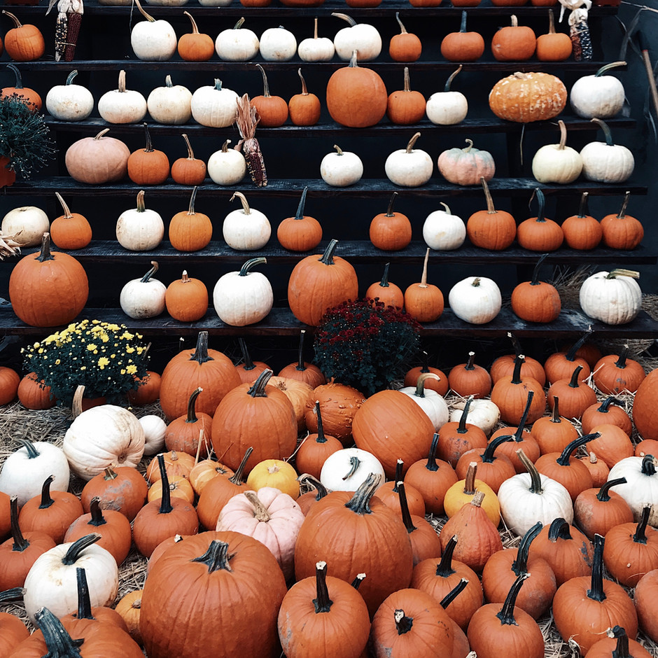 Halloween tips from IAT