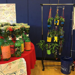 _3Dponics hydroponic systems! Union City Summer STEM Camp