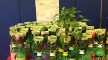 Urban Farming: The Education Version