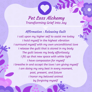 Daily Affirmation : Guilt Release 02