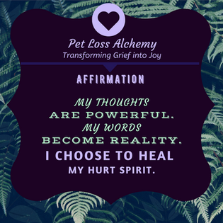 Daily Affirmation : I choose to heal!