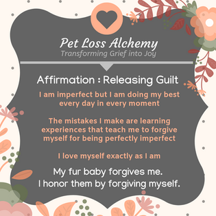 Daily Affirmation: Guilt Release