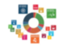 Charitnation-commitment-to-sdgs-inforgap