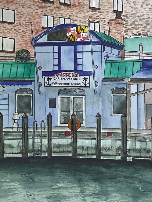 Pusser's Caribbean Grill