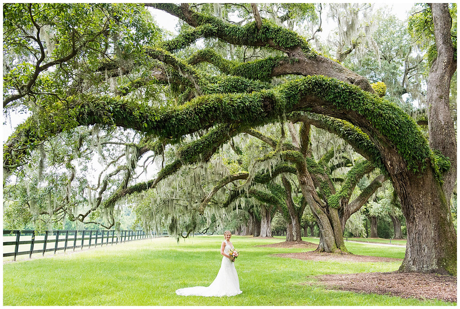 Kelsey || Classic Boone Hall Bridal Portraits