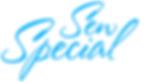 2019 Logo Option