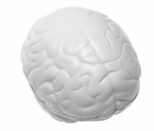 Brain Slo-Release Serenity Squishy™