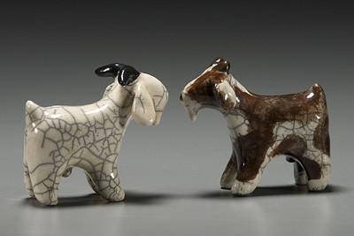 Goats-Billy