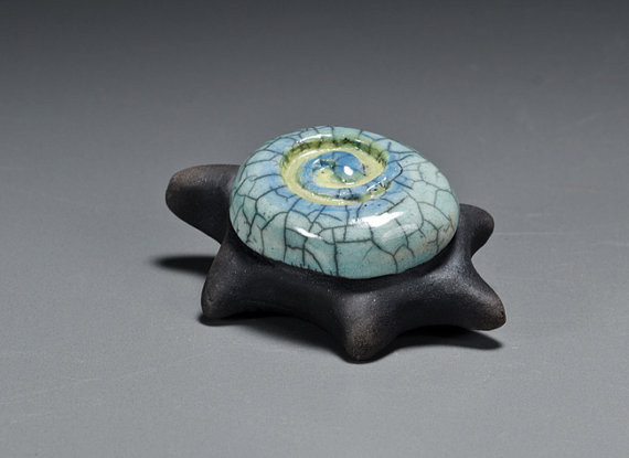 Turtle with spiral